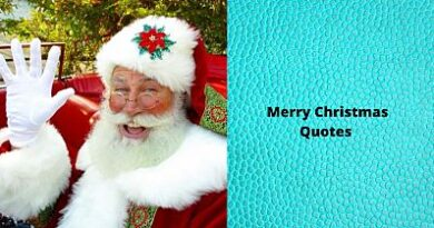 Merry Christmas Quotes opt opt