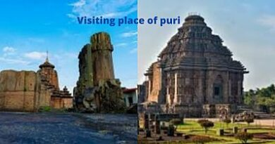 visiting place of puri