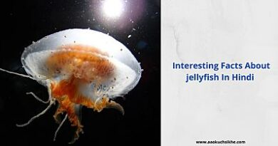 Facts about jellyfish in Hindi