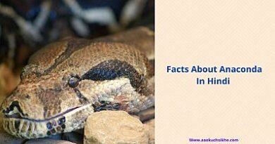 Facts about Anaconda in Hindi