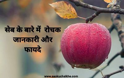 Facts about apple in Hindi
